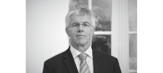 Straubhaar2014-Inhalt